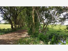 Foto de rancho en venta en carretera villahermosa teapa kilometro 34 , plaza villahermosa, centro, tabasco, 8678632 No. 01