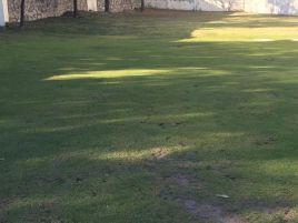 Foto de terreno habitacional en venta en Colinas de San Javier, Zapopan, Jalisco, 15398483,  no 01