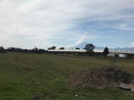 Foto de terreno industrial en venta en San Miguel Xoxtla, San Miguel Xoxtla, Puebla, 11657867,  no 01