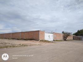 Foto de terreno industrial en renta en  , central de abastos, aguascalientes, aguascalientes, 12301876 No. 01