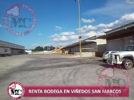 Foto de nave industrial en renta en  , centro distribuidor de básicos viñedos san marcos, jesús maría, aguascalientes, 0 No. 01