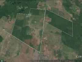 Foto de rancho en venta en  , champotón centro, champotón, campeche, 10699381 No. 01