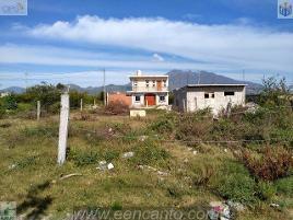 Foto de terreno habitacional en venta en chihuahua , el armadillo, tepic, nayarit, 0 No. 01