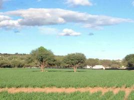 Foto de rancho en venta en  , ciudad dolores hidalgo, dolores hidalgo cuna de la independencia nacional, guanajuato, 0 No. 01