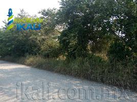 Foto de terreno industrial en venta en congregación juana moza , isla de juana moza, tuxpan, veracruz de ignacio de la llave, 12690664 No. 01