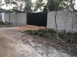 Foto de terreno industrial en venta en conocida , alfredo v bonfil, benito juárez, quintana roo, 11892577 No. 03