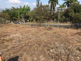 Foto de terreno comercial en venta en  , copoya, tuxtla gutiérrez, chiapas, 14066853 No. 01