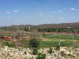Foto de rancho en venta en  , dzitnup, hecelchakán, campeche, 16344190 No. 01
