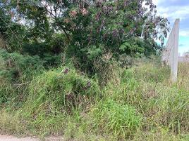 Foto de terreno habitacional en venta en dzitya whi9252, dzitya, mérida, yucatán, 0 No. 01