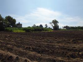 Foto de terreno habitacional en venta en Guadalupe, Texcoco, México, 17100450,  no 01