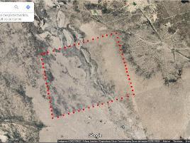 Foto de terreno habitacional en venta en ejido el salvador s/n , el salvador, el salvador, zacatecas, 0 No. 01