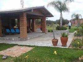 Foto de terreno habitacional en venta en ejido san antonio, tepezala, aguascalientes. , san antonio, tepezalá, aguascalientes, 0 No. 01