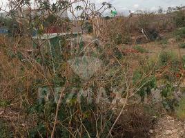 Foto de terreno industrial en venta en ejido santa rosa-pie de gallo , santa rosa de jauregui, querétaro, querétaro, 0 No. 04