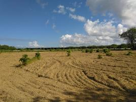 Foto de terreno comercial en venta en el alamo 001, san josé del cabo centro, los cabos, baja california sur, 17793309 No. 01