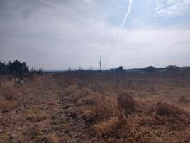 Foto de terreno habitacional en renta en el cariñán , cariñan, aguascalientes, aguascalientes, 7626141 No. 01