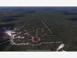 Foto de terreno habitacional en venta en el dorado de oya 20, puerto maya, solidaridad, quintana roo, 0 No. 01