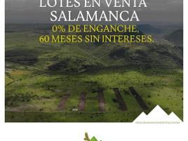 Foto de terreno habitacional en venta en el jagüey , santa cruz de juventino rosas, santa cruz de juventino rosas, guanajuato, 0 No. 01