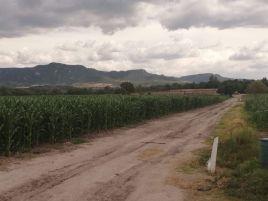 Foto de rancho en renta en San José Iturbide Centro, San José Iturbide, Guanajuato, 19699685,  no 01