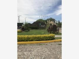 Foto de terreno habitacional en venta en ficus 252, el trébol, león, guanajuato, 0 No. 01