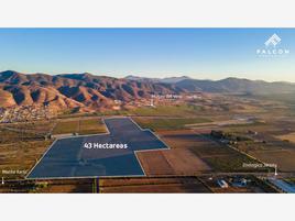 Foto de terreno comercial en venta en francisco zarco - el tigre , francisco zarco, ensenada, baja california, 19228590 No. 01