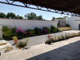 Foto de bodega en venta en genovevo de la independencia y francisco villa , santa maría ahuacatitlán, cuernavaca, morelos, 0 No. 01