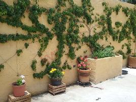 Foto de casa en venta en girasoles 37893, el cortijo, san miguel de allende, guanajuato, 0 No. 01