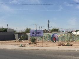 Foto de terreno habitacional en renta en gomez morin , misión de san diego de alcalá, mexicali, baja california, 17930446 No. 01