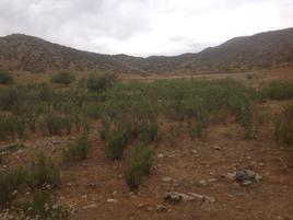 Foto de terreno comercial en venta en  , guadalupe, ensenada, baja california, 0 No. 01