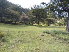 Foto de terreno habitacional en venta en hacienda de guadalupe 30, el manzano, omitlán de juárez, hidalgo, 0 No. 01