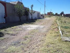 Foto de rancho en venta en hacienda real , morelos, morelos, zacatecas, 14120396 No. 01