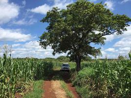 Foto de rancho en venta en  , hecelchakan, hecelchakán, campeche, 7513382 No. 01