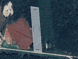 Foto de terreno habitacional en venta en  , hopelchen centro, hopelchén, campeche, 0 No. 01