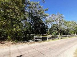 Foto de rancho en venta en  , imi, campeche, campeche, 15792681 No. 01