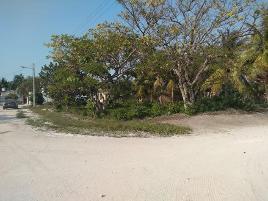 Foto de terreno habitacional en renta en  , isla aguada, carmen, campeche, 0 No. 01