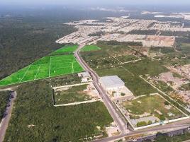 Foto de terreno industrial en venta en  , itzincab, umán, yucatán, 0 No. 01