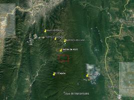 Foto de terreno habitacional en venta en  , jaumave centro, jaumave, tamaulipas, 0 No. 01
