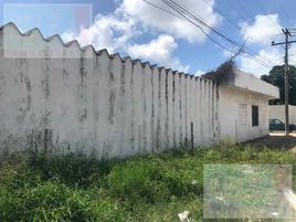 Foto de terreno habitacional en renta en  , jazmín, altamira, tamaulipas, 0 No. 01