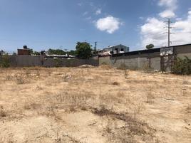 Foto de terreno comercial en renta en jesus castro , lomas altas, los cabos, baja california sur, 14250062 No. 01