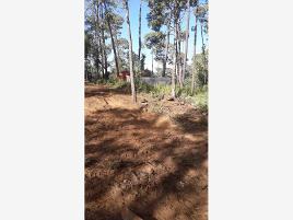 Foto de terreno habitacional en venta en kartodromo valle de bravo 100, bosques de la mora, toluca, méxico, 0 No. 01