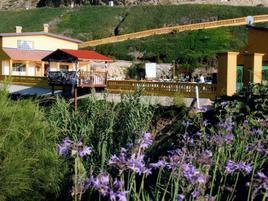 Foto de terreno habitacional en renta en kilometro 17 , granjas la esperanza, tijuana, baja california, 0 No. 01
