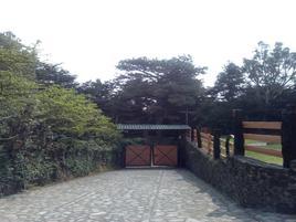Foto de rancho en venta en kilometro 31 carretera federal , san miguel topilejo, tlalpan, df / cdmx, 13526337 No. 03