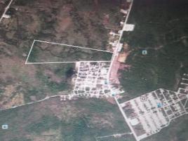 Foto de terreno industrial en venta en kilometro 55 52, santiago palacios carrillo, bacalar, quintana roo, 0 No. 01