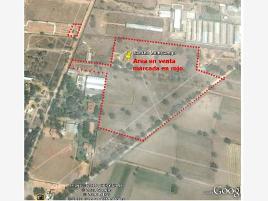 Foto de terreno habitacional en venta en kilometro 8.5 carretera los reyes zumpango 1, buenavista, zumpango, méxico, 0 No. 01