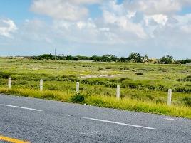Foto de terreno industrial en venta en kilometro , el tecolote (ejido), matamoros, tamaulipas, 10124024 No. 01