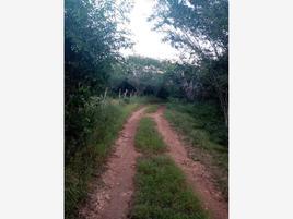 Foto de rancho en venta en  , kimbila, izamal, yucatán, 0 No. 01