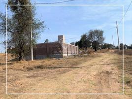 Foto de terreno habitacional en venta en  , la ascensión huitzcolotepec, xaltocan, tlaxcala, 0 No. 01