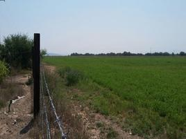 Foto de rancho en venta en  , la cabra, dolores hidalgo cuna de la independencia nacional, guanajuato, 0 No. 01