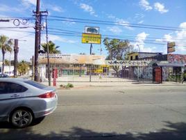 Foto de terreno comercial en renta en  , la mesa, tijuana, baja california, 0 No. 01