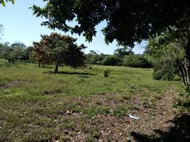 Foto de terreno comercial en venta en la palma 1, barrancas y amate 3a secc, centro, tabasco, 8615571 No. 01