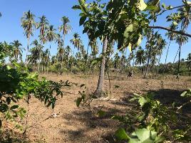 Foto de terreno industrial en venta en la sabana-las plazuelas , la sabana, acapulco de juárez, guerrero, 6534611 No. 01